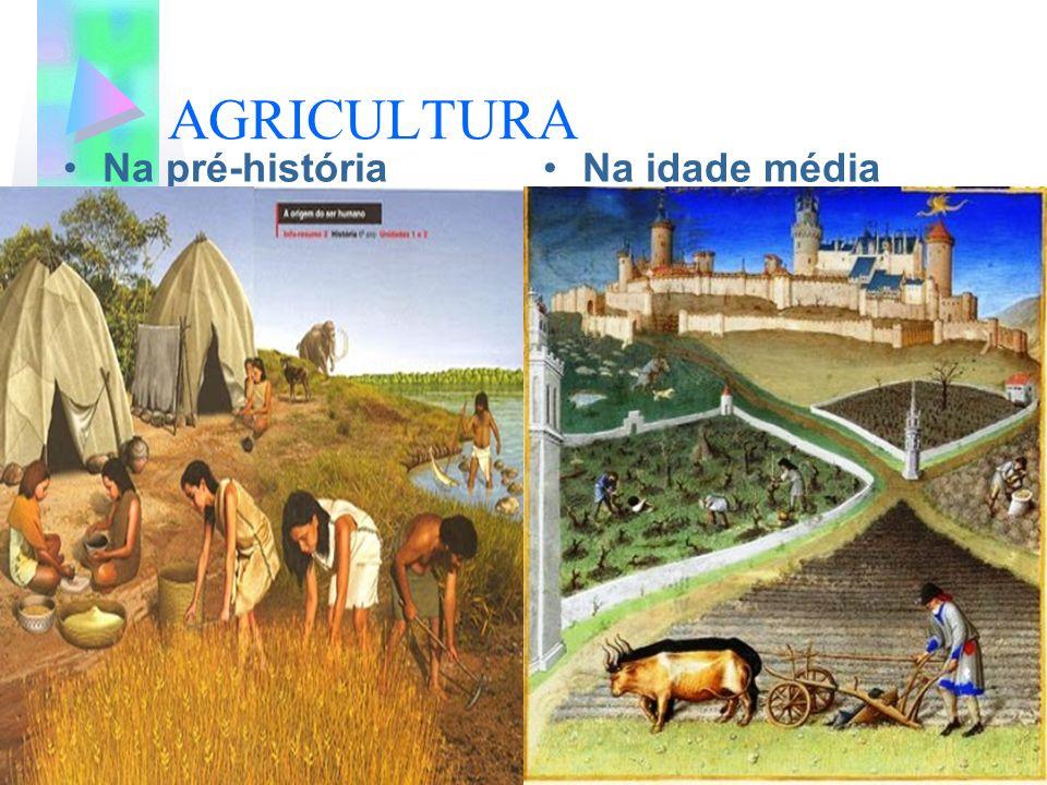 AGRICULTURA Na pré-históriaNa idade média