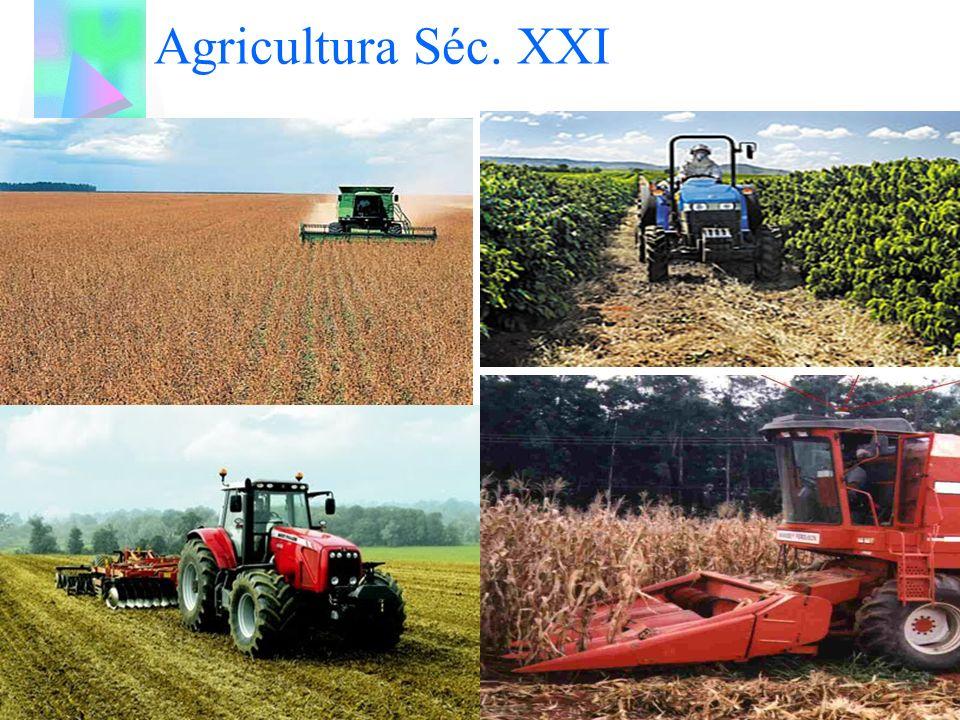 AGRICULTURA MODERNA TÍPICA DE PAÍSES DESENVOLVIDOS COMO ESTADOS UNIDOS E PAÍSES DA EUROPA CARACTERIZA-SE PELO USO DER MÁQUINAS E PEQUENA MÃO-DE OBRA.