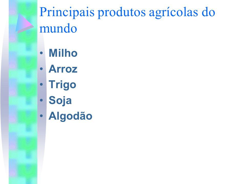 Principais produtos agrícolas do mundo Milho Arroz Trigo Soja Algodão