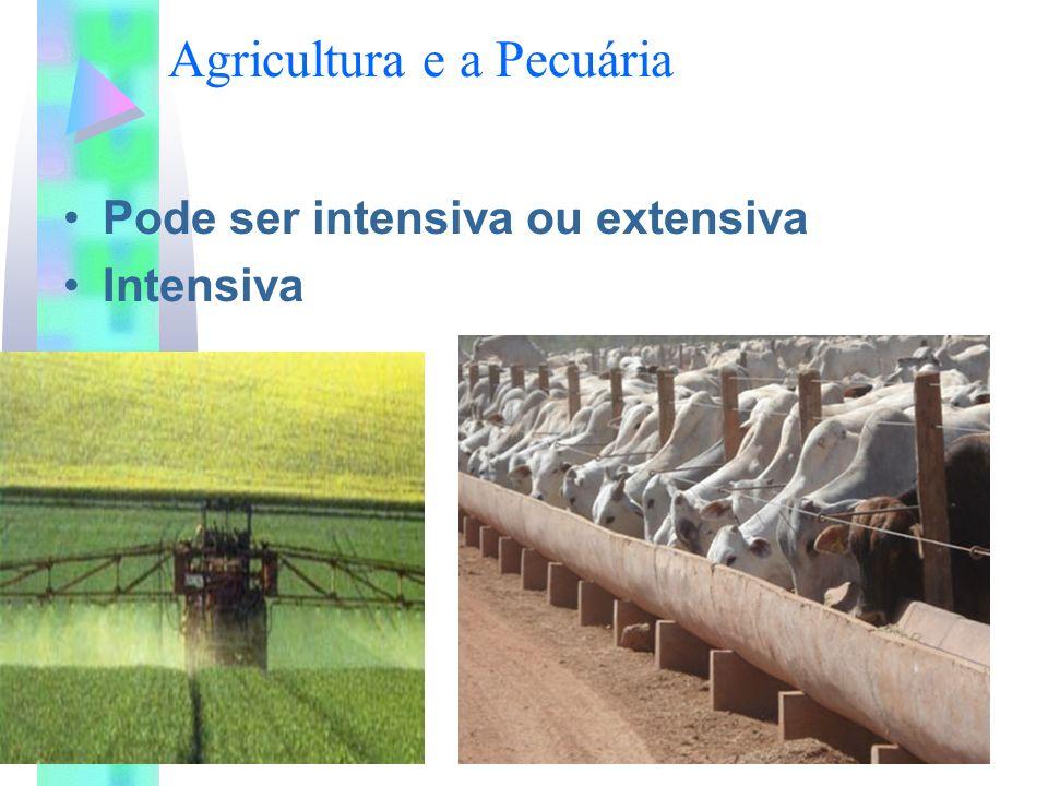 Agricultura e a Pecuária Pode ser intensiva ou extensiva Intensiva