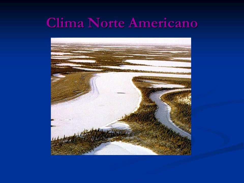 Relevo O relevo norte-americano compreende dois sistemas montanhosos principais, dispostos de forma quase paralela: os montes Apalaches ou Alegânis e as cordilheiras Ocidentais, que incluem: as montanhas Rochosas, a serra Nevada, os montes das Cascatas e a cadeia da Costa.