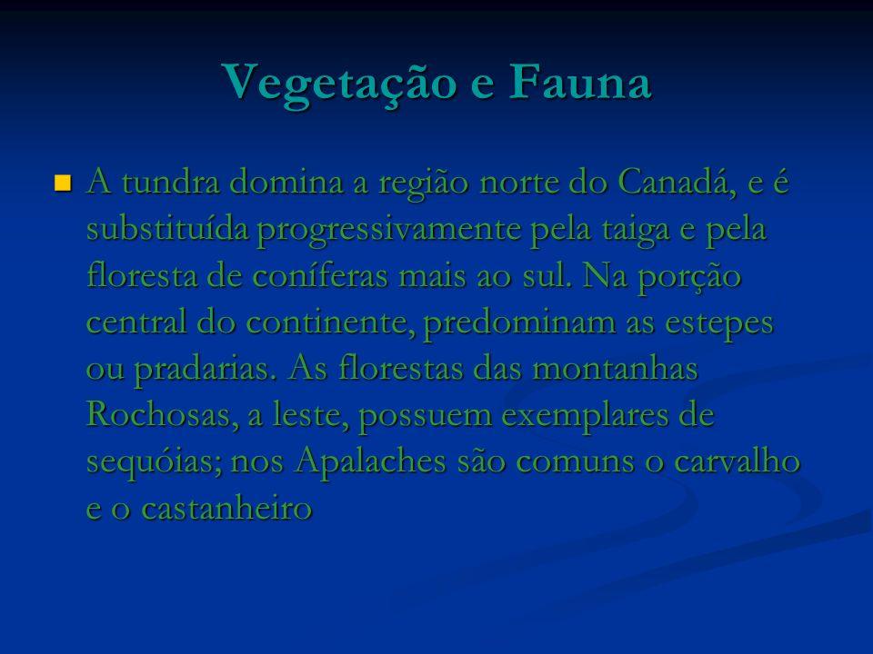Vegetação e Fauna A tundra domina a região norte do Canadá, e é substituída progressivamente pela taiga e pela floresta de coníferas mais ao sul.