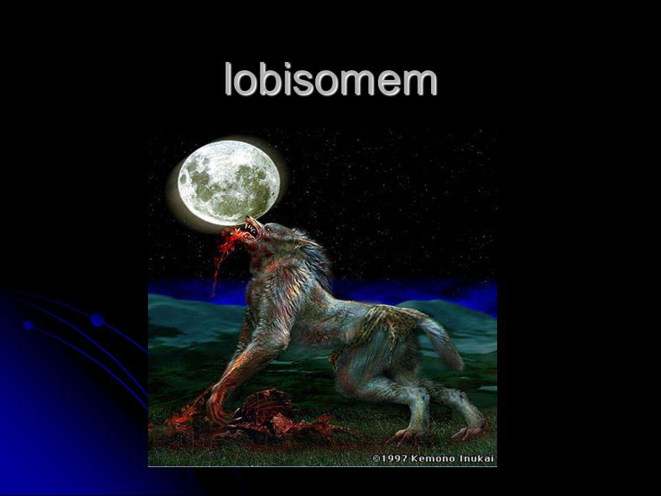 A lenda do lobisomem tem, provavelmente, origem na Europa do século XVI, embora traços desta lenda apareçam em alguns mitos da Grécia Antiga.