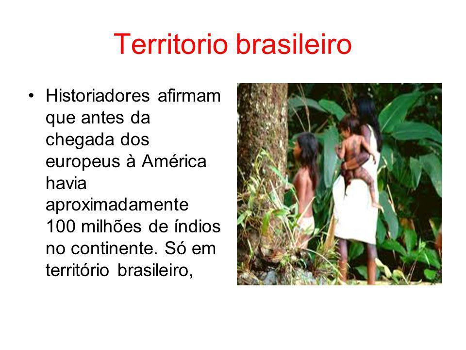 Territorio brasileiro Historiadores afirmam que antes da chegada dos europeus à América havia aproximadamente 100 milhões de índios no continente. Só