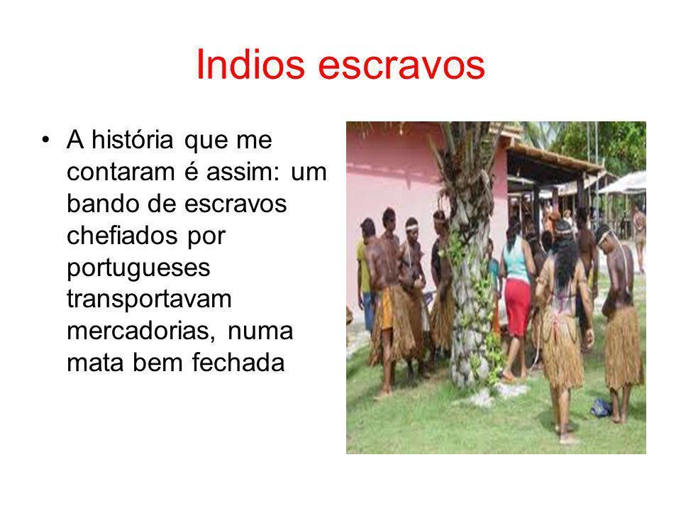 Indios escravos A história que me contaram é assim: um bando de escravos chefiados por portugueses transportavam mercadorias, numa mata bem fechada