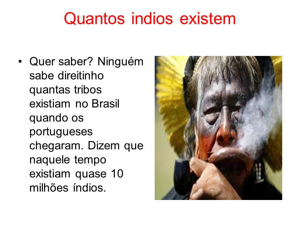 Quantos indios existem Quer saber? Ninguém sabe direitinho quantas tribos existiam no Brasil quando os portugueses chegaram. Dizem que naquele tempo e