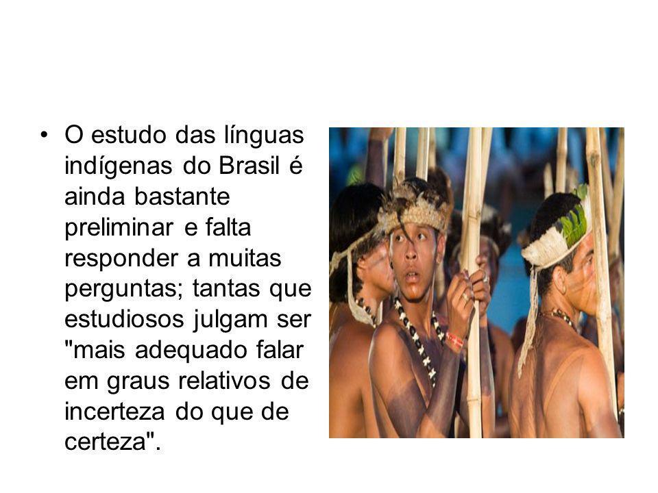 O estudo das línguas indígenas do Brasil é ainda bastante preliminar e falta responder a muitas perguntas; tantas que estudiosos julgam ser