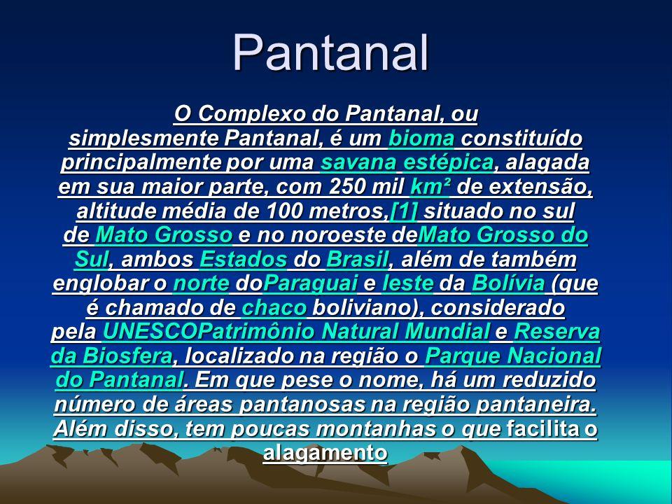 Pantanal O Complexo do Pantanal, ou simplesmente Pantanal, é um bbbb iiii oooo mmmm aaaa constituído principalmente por uma ssss aaaa vvvv aaaa nnnn aaaa eeee ssss tttt éééé pppp iiii cccc aaaa, alagada em sua maior parte, com 250 mil kkkk mmmm ²²²² de extensão, altitude média de 100 metros, [[[[ 1111 ]]]] situado no sul de MMMM aaaa tttt oooo G G G G rrrr oooo ssss ssss oooo e no noroeste de MMMM aaaa tttt oooo G G G G rrrr oooo ssss ssss oooo d d d d oooo SSSS uuuu llll, ambos EEEE ssss tttt aaaa dddd oooo ssss do BBBB rrrr aaaa ssss iiii llll, além de também englobar o nnnn oooo rrrr tttt eeee do PPPP aaaa rrrr aaaa gggg uuuu aaaa iiii e llll eeee ssss tttt eeee da BBBB oooo llll íííí vvvv iiii aaaa (que é chamado de cccc hhhh aaaa cccc oooo boliviano), considerado pela UUUU NNNN EEEE SSSS CCCC OOOO PPPP aaaa tttt rrrr iiii mmmm ôôôô nnnn iiii oooo N N N N aaaa tttt uuuu rrrr aaaa llll M M M M uuuu nnnn dddd iiii aaaa llll e RRRR eeee ssss eeee rrrr vvvv aaaa dddd aaaa B B B B iiii oooo ssss ffff eeee rrrr aaaa, localizado na região o PPPP aaaa rrrr qqqq uuuu eeee N N N N aaaa cccc iiii oooo nnnn aaaa llll dddd oooo P P P P aaaa nnnn tttt aaaa nnnn aaaa llll.