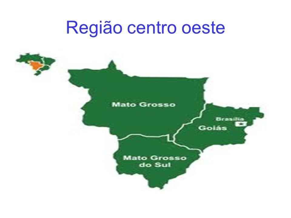 Centro-Oeste é umas das cinco grandes regiões em que é dividido o Brasil.