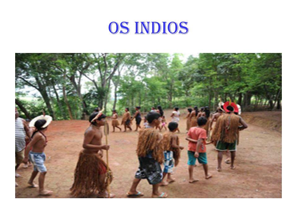 Os povos indígenas no Brasil incluem um grande número de diferentes grupos étnicos que habitam ou habitaram o território brasileiro, e cujas raízes remontam às Américas desde antes da chegada dos europeus a este continente, em torno de 1500.grupos étnicos brasileiroAméricaseuropeus1500