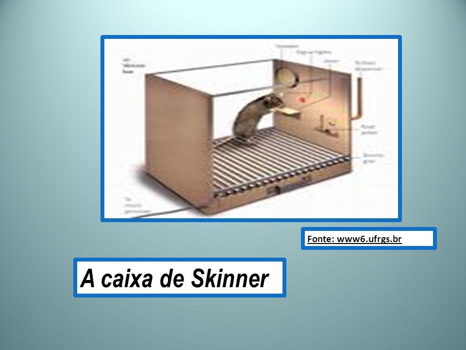 A caixa de Skinner Fonte: www6.ufrgs.br