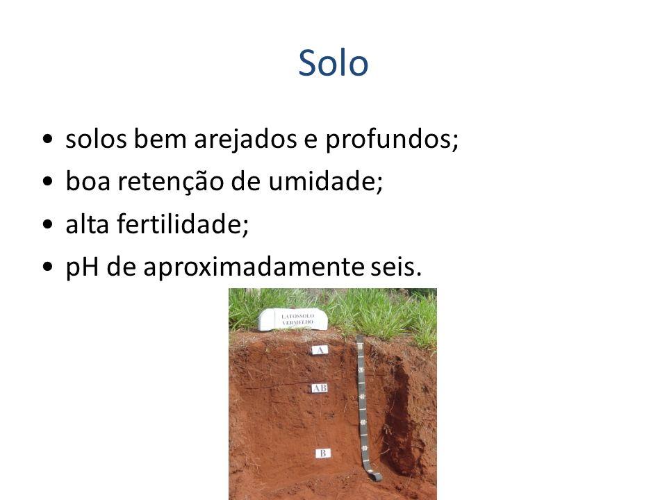 Solo solos bem arejados e profundos; boa retenção de umidade; alta fertilidade; pH de aproximadamente seis.