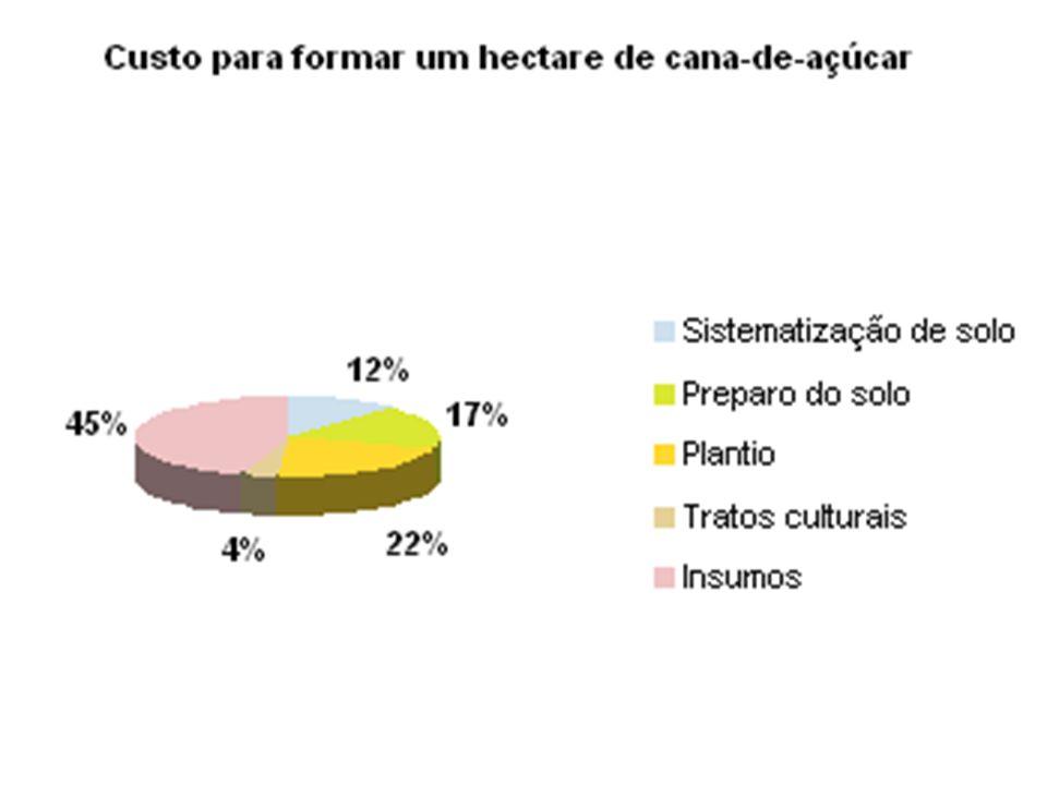 Principais áreas de pesquisa produção agrícola; produção industrial; desenvolvimento de novos produtos; são conduzidas por instituições públicas, universidades e empresas privadas; destaca-se a Rede Interuniversitária para o Desenvolvimento do Setor Sucroalcooleiro do Brasil (Ridesa), fundada em 1991