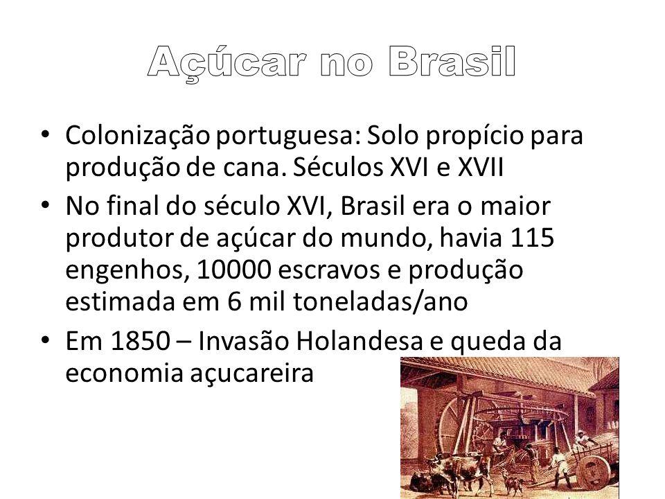 Colonização portuguesa: Solo propício para produção de cana. Séculos XVI e XVII No final do século XVI, Brasil era o maior produtor de açúcar do mundo