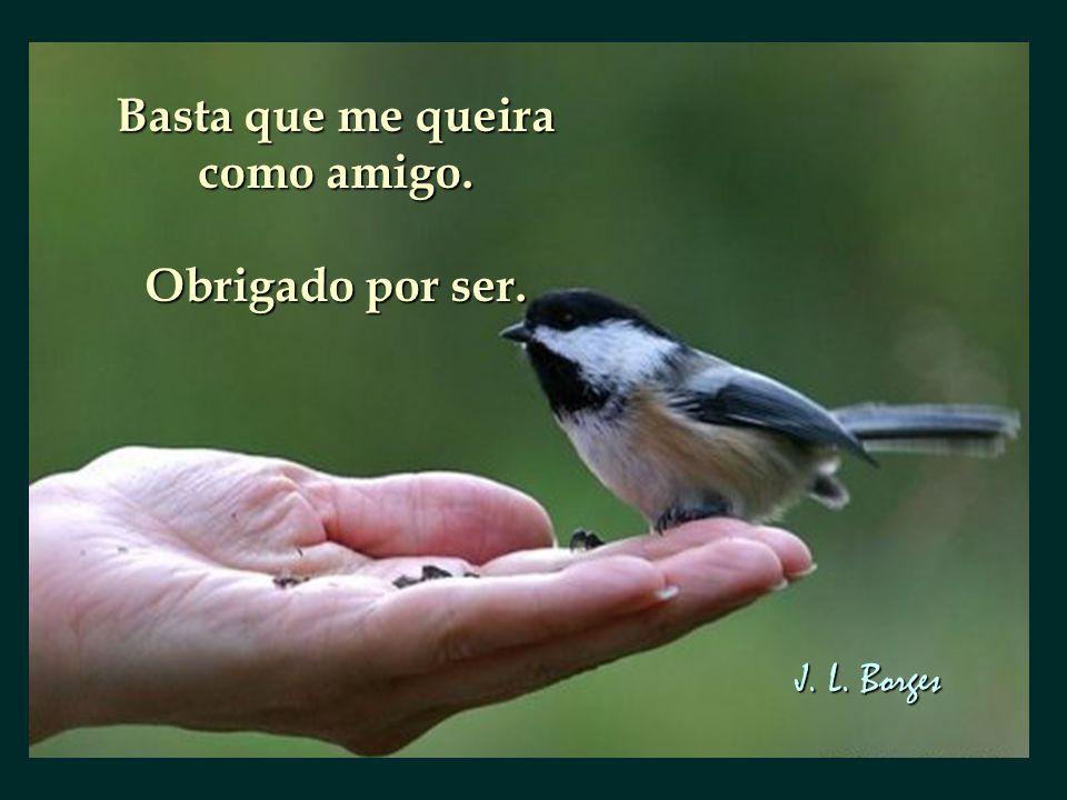 Basta que me queira como amigo. Obrigado por ser. J. L. Borges