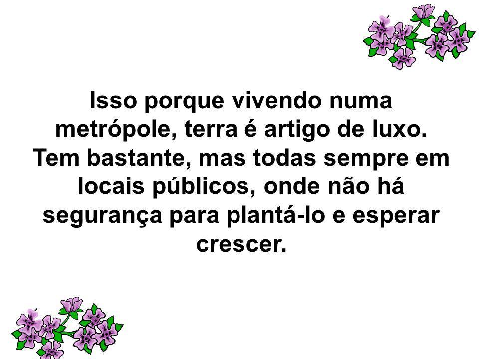 Isso porque vivendo numa metrópole, terra é artigo de luxo. Tem bastante, mas todas sempre em locais públicos, onde não há segurança para plantá-lo e
