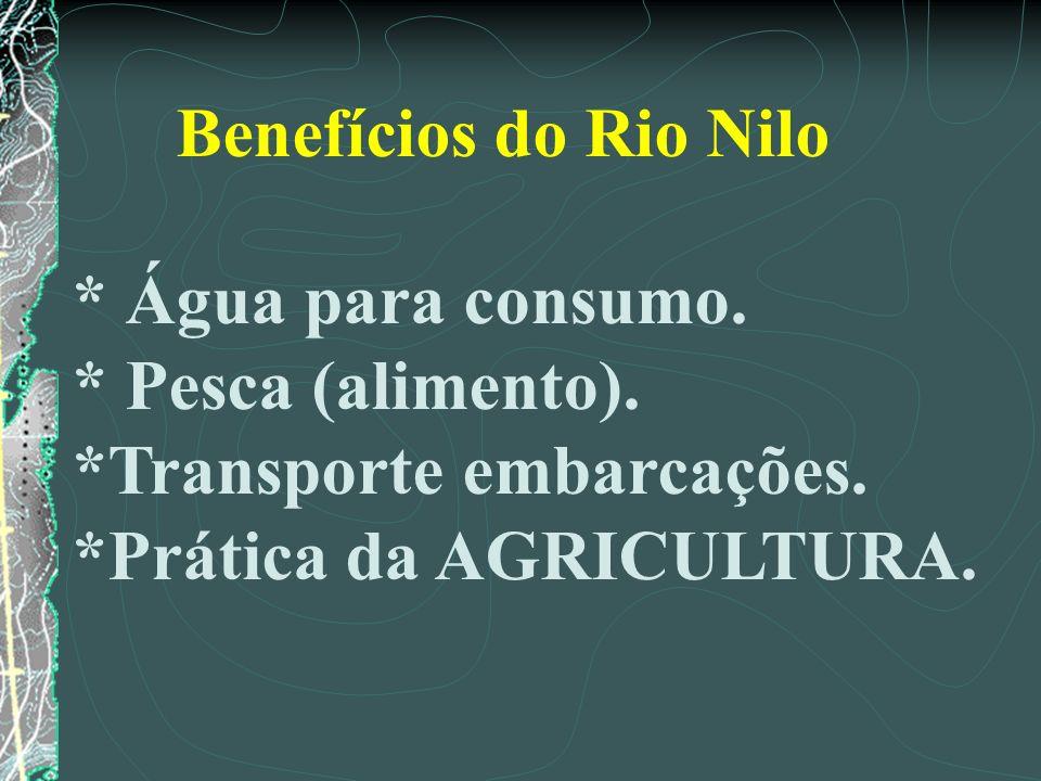 Benefícios do Rio Nilo * Água para consumo. * Pesca (alimento). *Transporte embarcações. *Prática da AGRICULTURA.