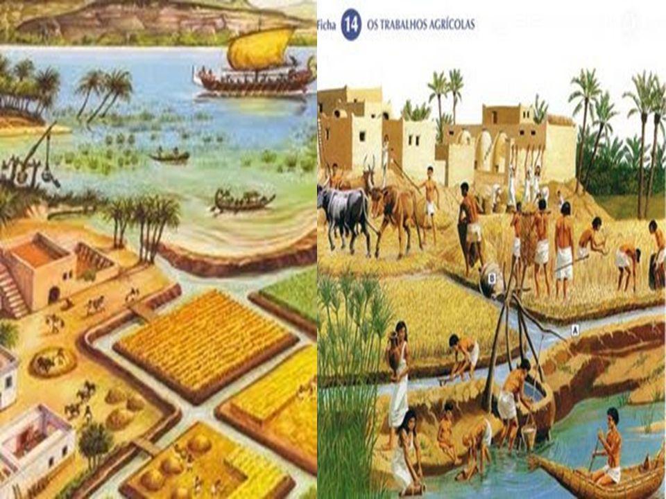 Sociedade Egípcia A sociedade EGÍPCIA vivia e era organizada seguindo-se uma rígida divisão social e de trabalho.