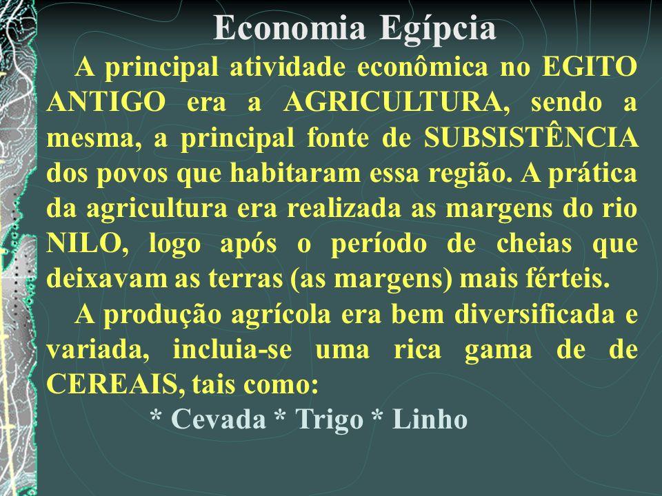 Economia Egípcia A principal atividade econômica no EGITO ANTIGO era a AGRICULTURA, sendo a mesma, a principal fonte de SUBSISTÊNCIA dos povos que hab
