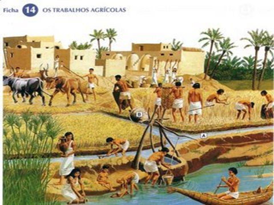 A prática da CRIAÇÃO DE GADO (pecuária) também era comum, principalmente de: * Cabras * Carneiros * Ovelhas *Bovinos Da criação de gado, eram aproveitados: *Carne *Leite *Lã *Couro