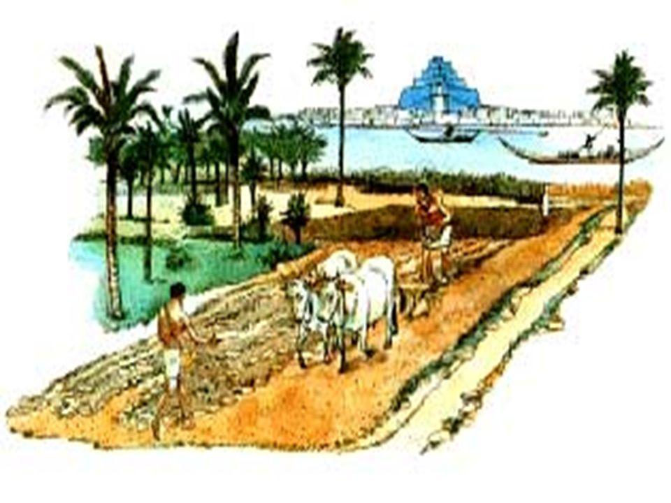 Arquitetura Egípcia Os egípcios costruíram grandes templos e pirâmides.