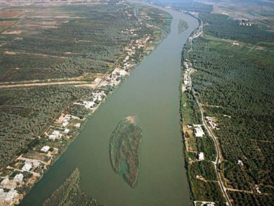 Benefícios do Rio Nilo * Água para consumo.* Pesca (alimento).