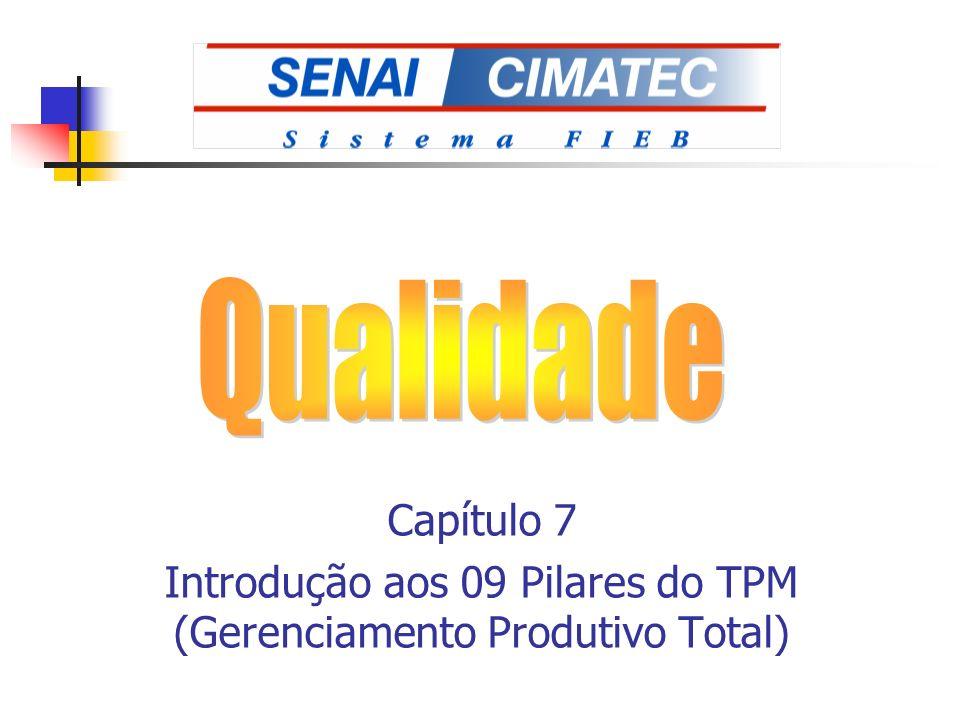 Capítulo 7 Introdução aos 09 Pilares do TPM (Gerenciamento Produtivo Total)