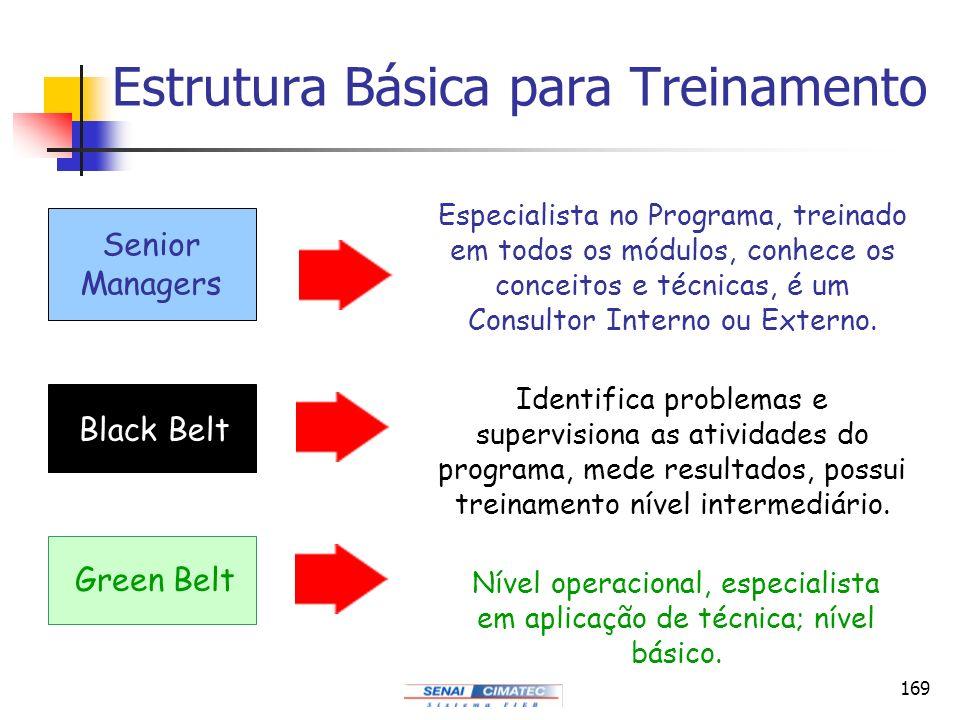 169 Estrutura Básica para Treinamento Senior Managers Black Belt Green Belt Especialista no Programa, treinado em todos os módulos, conhece os conceit