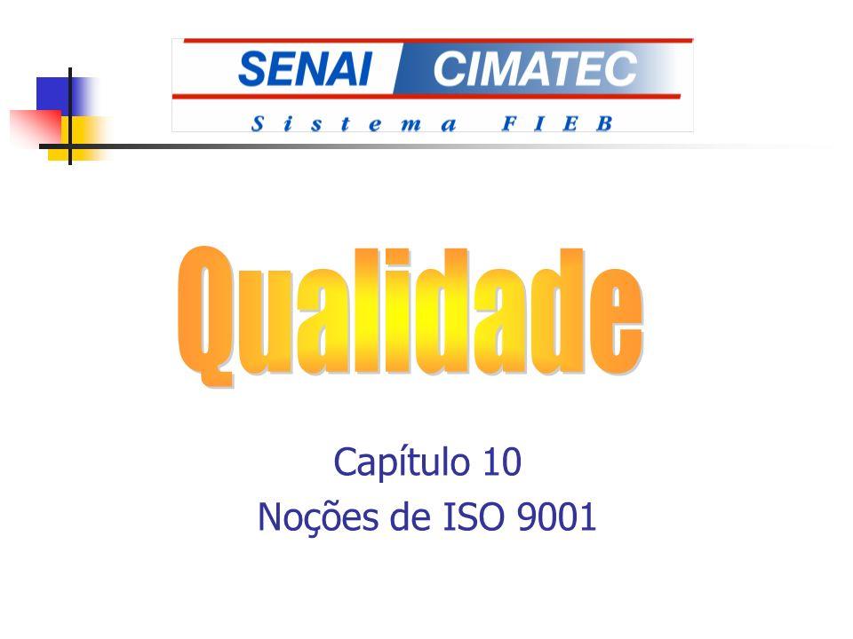 Capítulo 10 Noções de ISO 9001