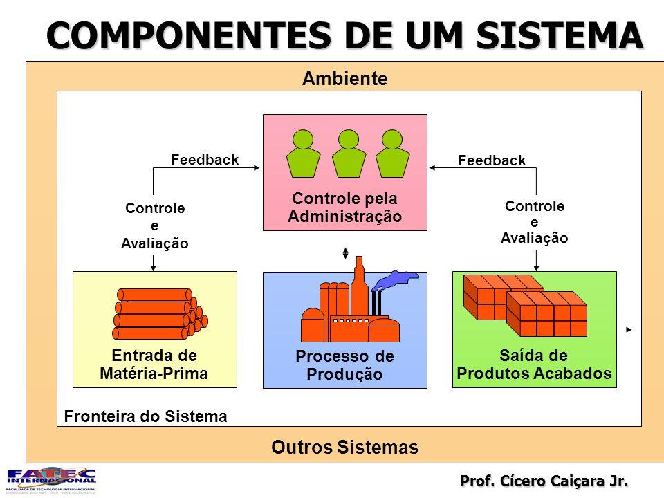 Prof. Cícero Caiçara Jr. COMPONENTES DE UM SISTEMA Processo de Produção Entrada de Matéria-Prima Saída de Produtos Acabados Ambiente Outros Sistemas C