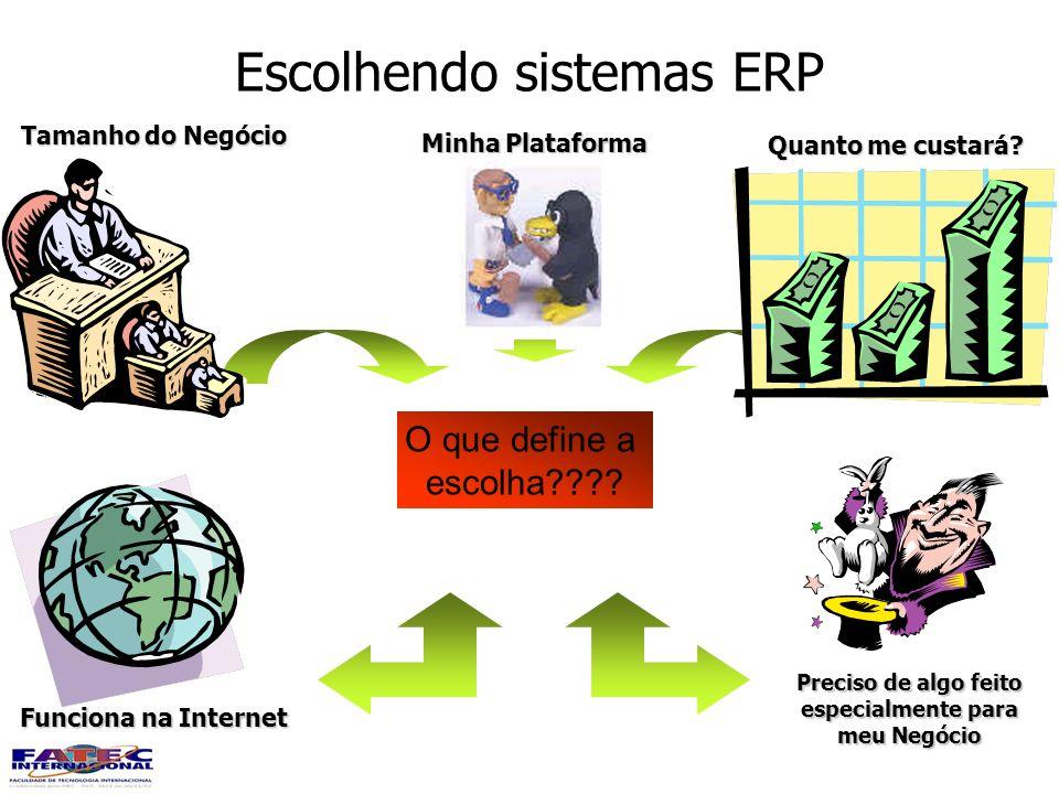 Escolhendo sistemas ERP O que define a escolha???? Quanto me custará? Minha Plataforma Tamanho do Negócio Funciona na Internet Preciso de algo feito e