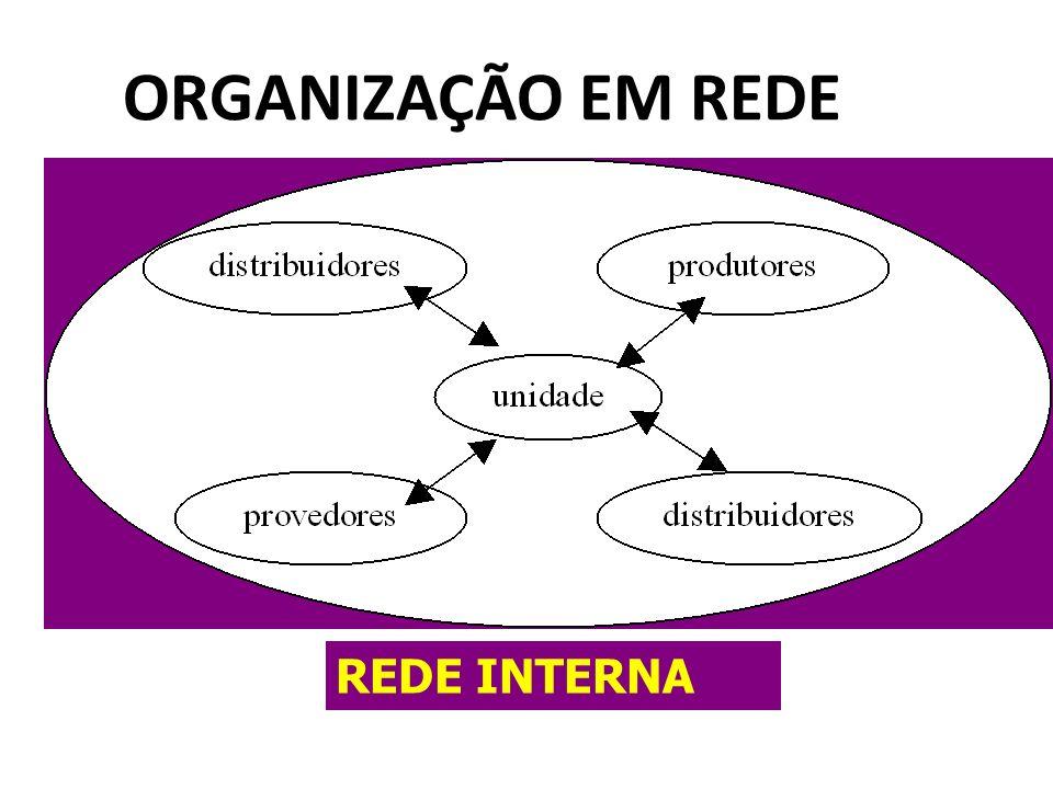 ORGANIZAÇÃO EM REDE REDE INTERNA