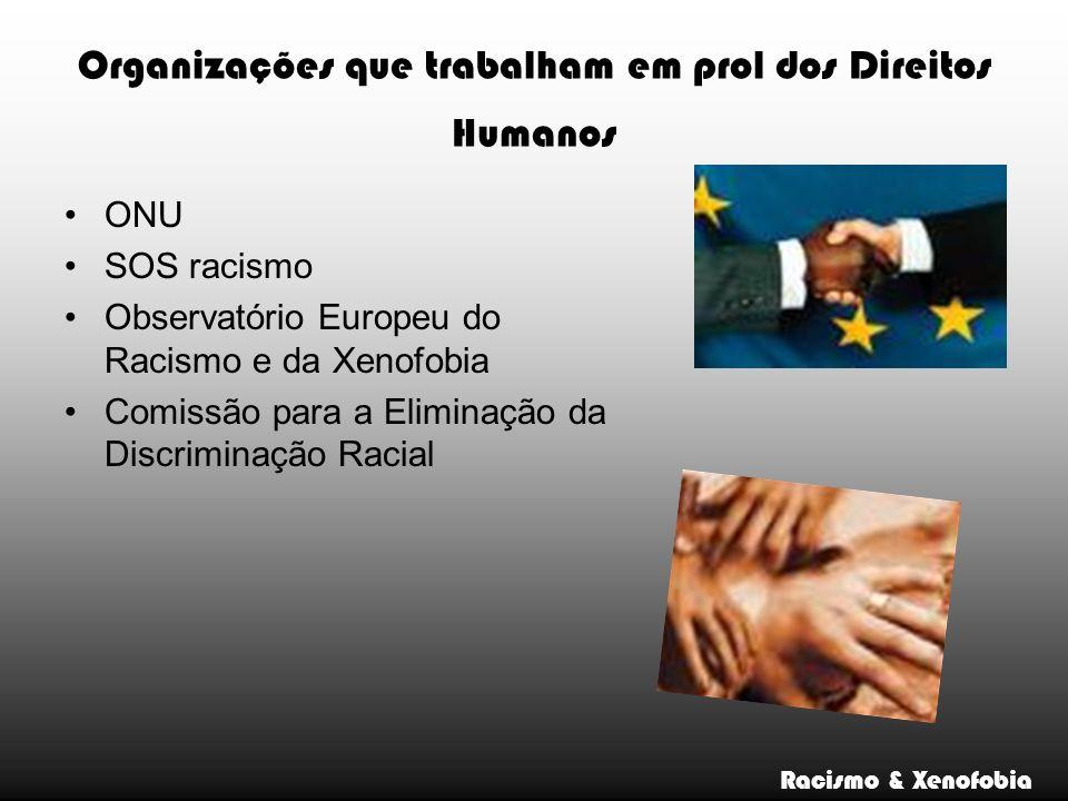 Organizações que trabalham em prol dos Direitos Humanos ONU SOS racismo Observatório Europeu do Racismo e da Xenofobia Comissão para a Eliminação da D