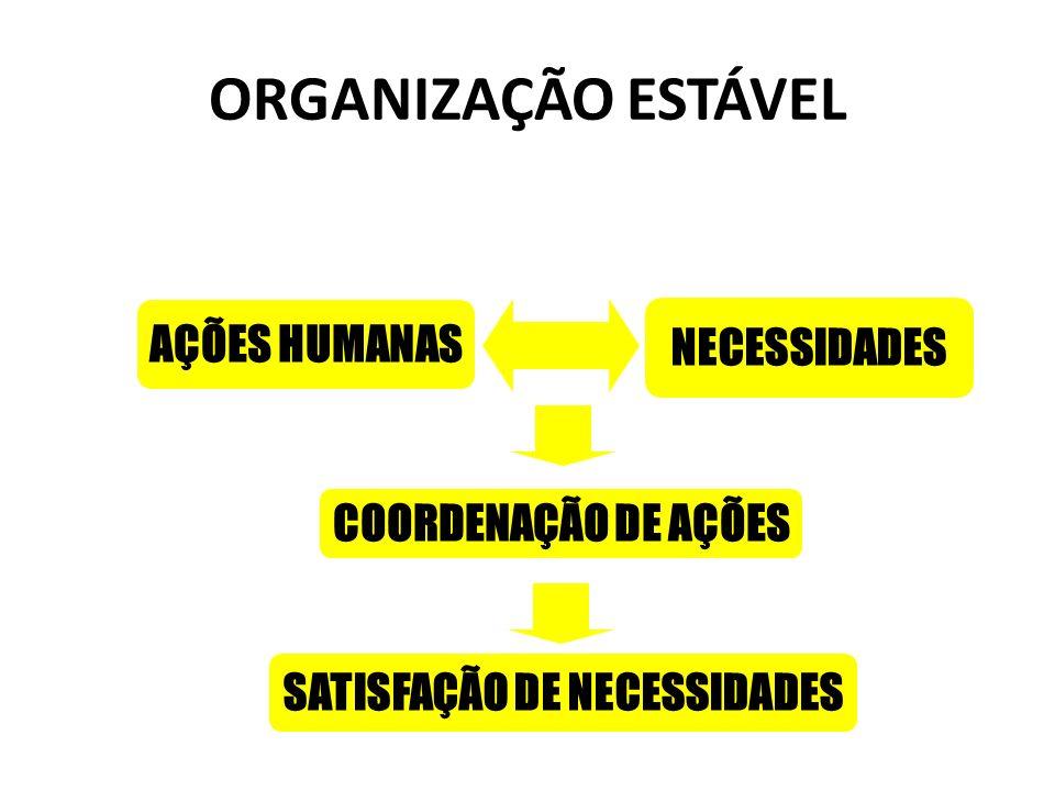 ORGANIZAÇÃO ESTÁVEL COORDENAÇÃO DE AÇÕES AÇÕES HUMANAS NECESSIDADES SATISFAÇÃO DE NECESSIDADES