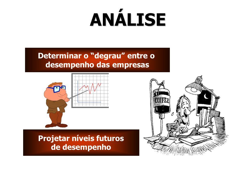 Determinar o degrau entre o desempenho das empresas Determinar o degrau entre o desempenho das empresas Projetar níveis futuros de desempenho Projetar