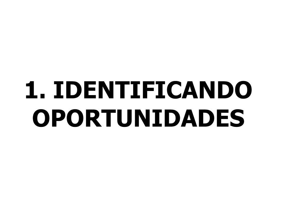 4. IDENTIFICAR RISCOS
