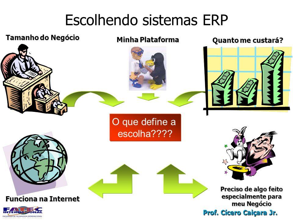 Prof. Cícero Caiçara Jr. Escolhendo sistemas ERP O que define a escolha???? Quanto me custará? Minha Plataforma Tamanho do Negócio Funciona na Interne