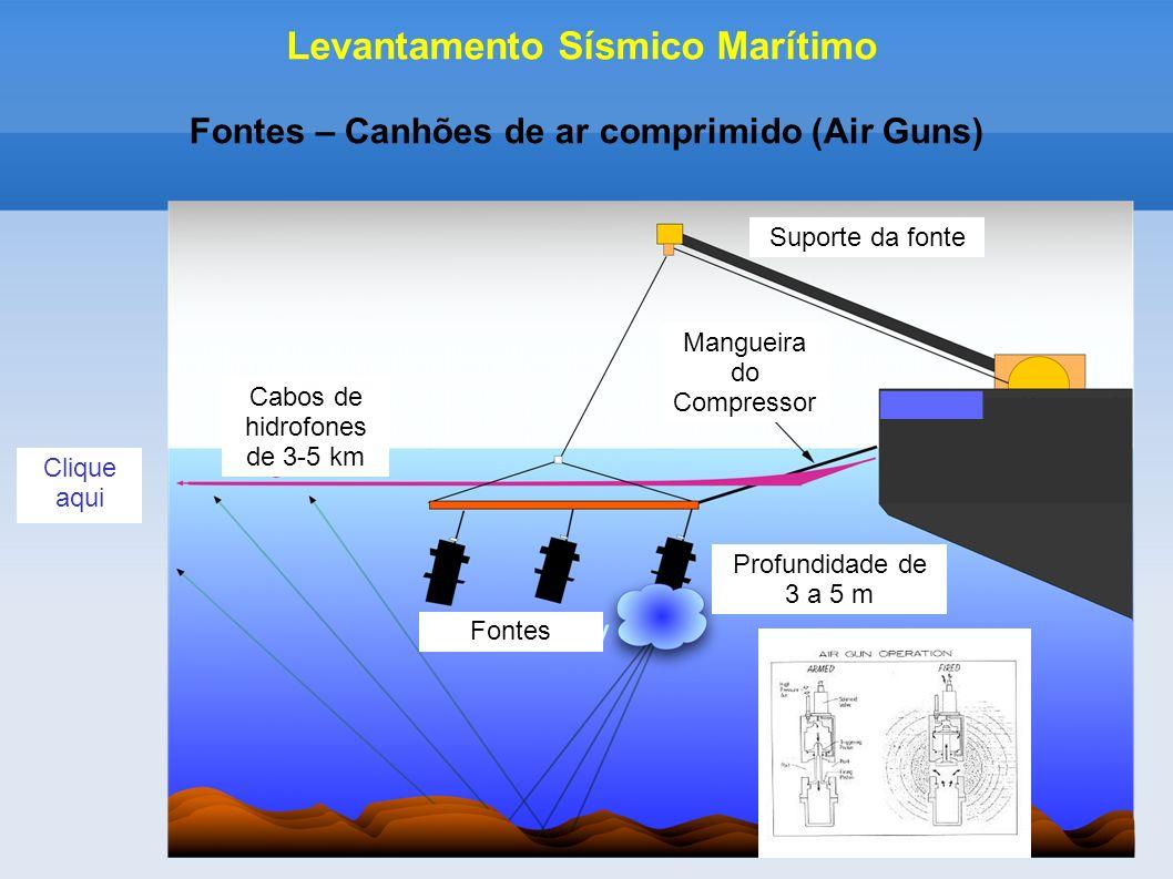 Fontes – Canhões de ar comprimido (Air Guns) Levantamento Sísmico Marítimo Mangueira do Compressor Cabos de hidrofones de 3-5 km Suporte da fonte Prof