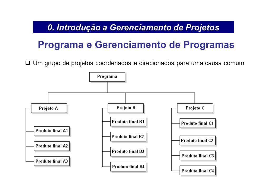 Programa e Gerenciamento de Programas Um grupo de projetos coordenados e direcionados para uma causa comum