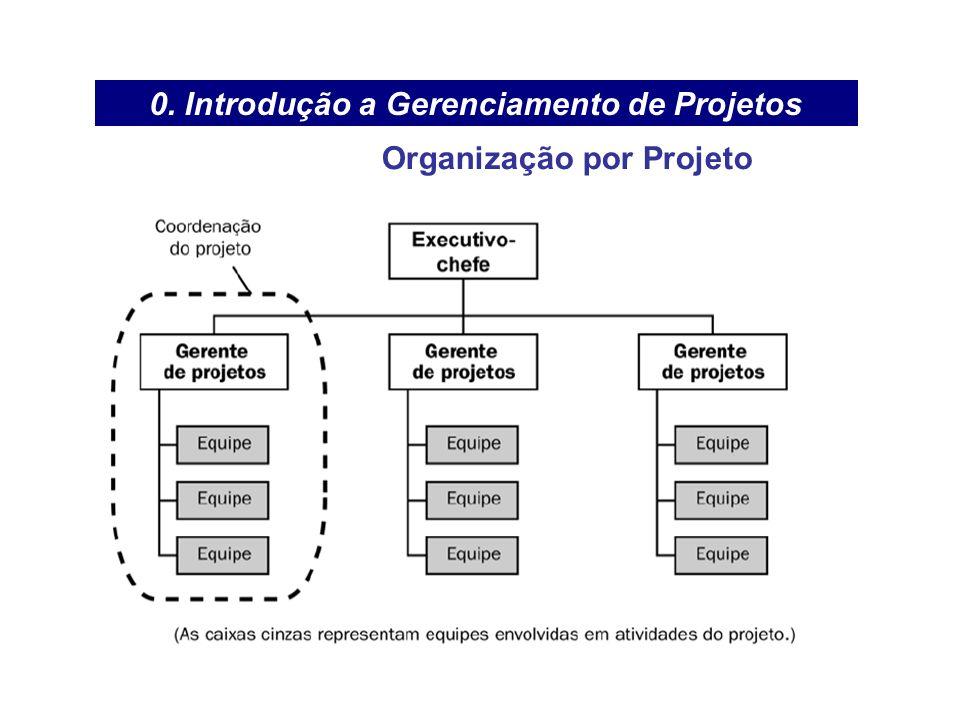 0. Introdução a Gerenciamento de Projetos Organização por Projeto