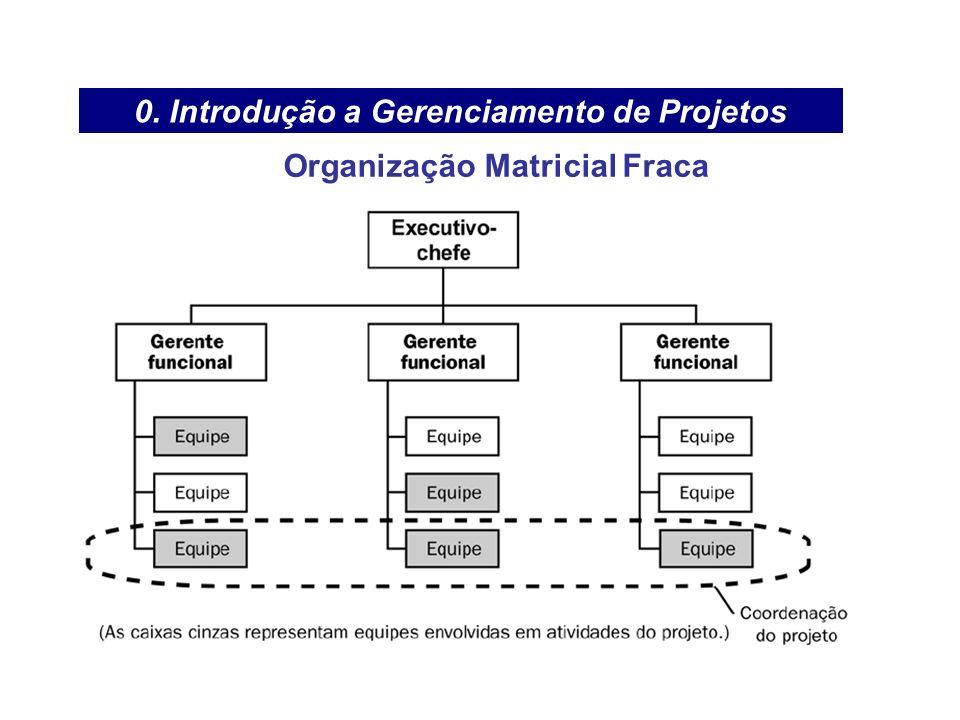 0. Introdução a Gerenciamento de Projetos Organização Matricial Fraca