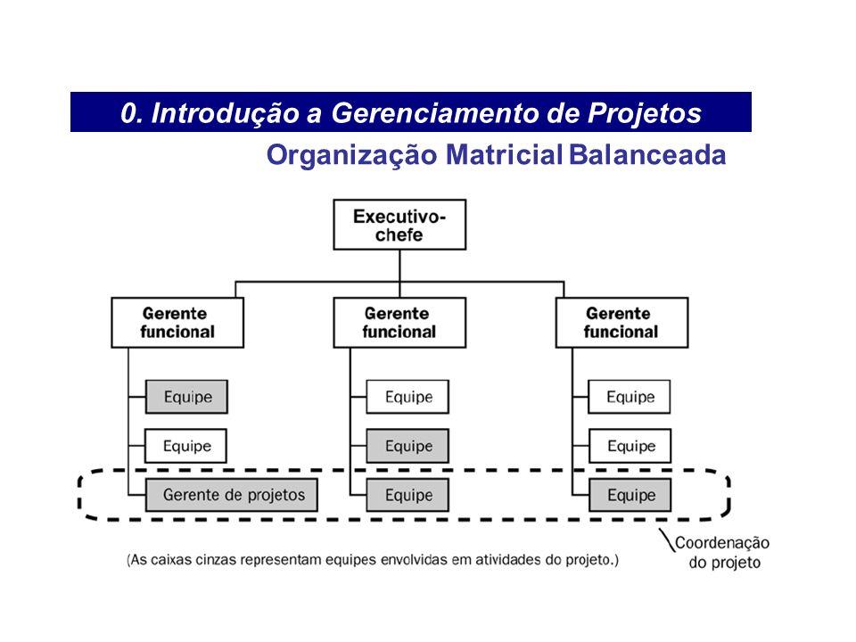 0. Introdução a Gerenciamento de Projetos Organização Matricial Balanceada