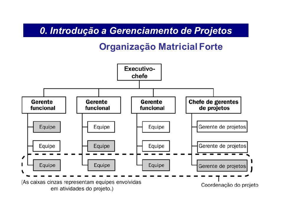 0. Introdução a Gerenciamento de Projetos Organização Matricial Forte