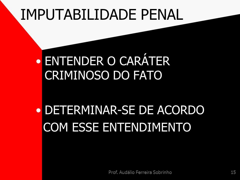 Prof. Audálio Ferreira Sobrinho15 IMPUTABILIDADE PENAL ENTENDER O CARÁTER CRIMINOSO DO FATO DETERMINAR-SE DE ACORDO COM ESSE ENTENDIMENTO