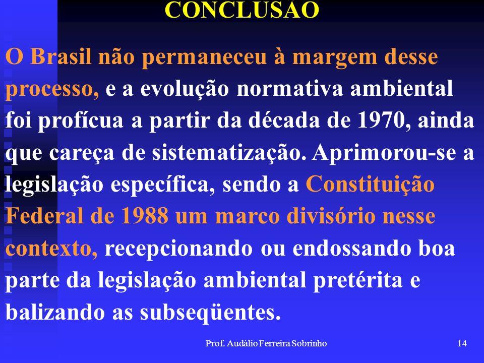 Prof. Audálio Ferreira Sobrinho13 CONCLUSÃO Nesse sentido, os embates conceituais sobre o meio ambiente, no intuito de enquadrá-lo no contexto dos dir