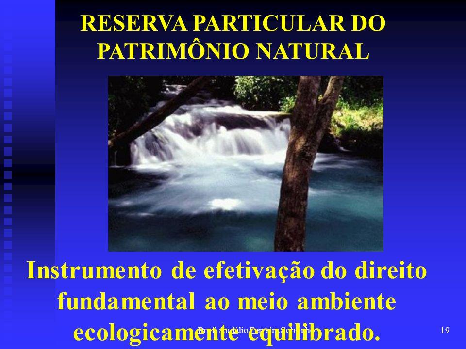 Prof. Audálio Ferreira Sobrinho18 RESERVA PARTICULAR DO PATRIMÔNIO NATURAL Instrumento do processo de vinculação: Estado-Sociedade-Proteção Ambiental