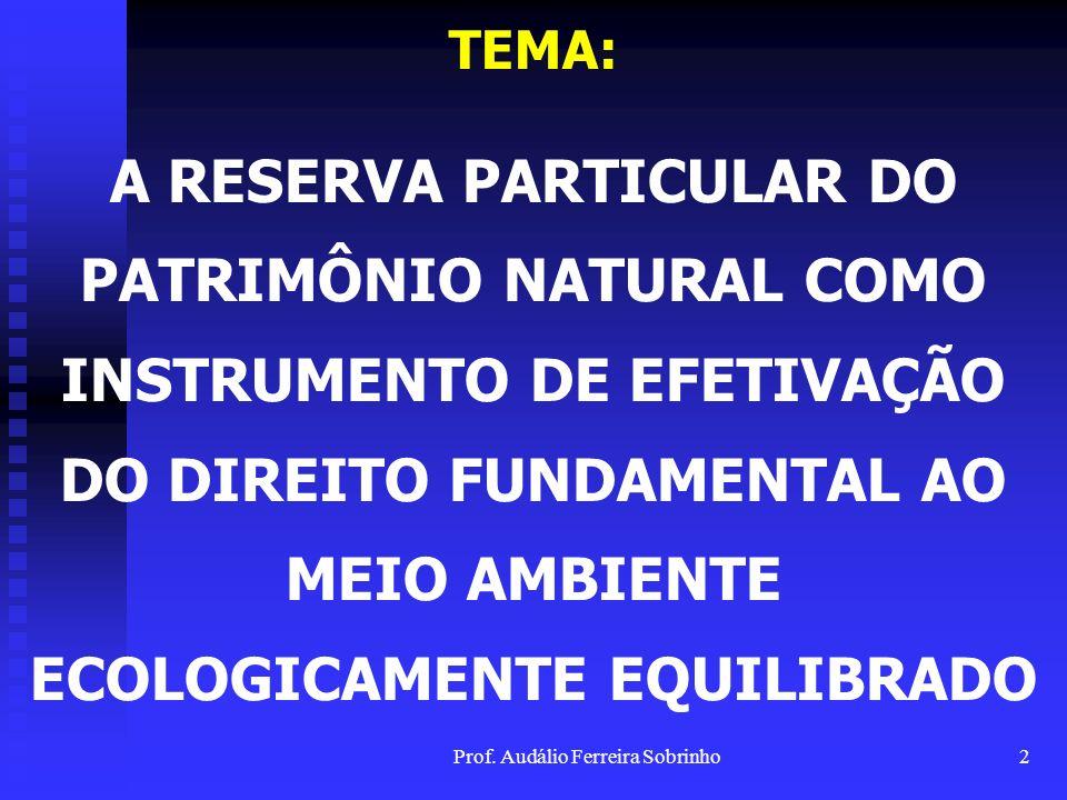 Prof. Audálio Ferreira Sobrinho1 UNIVERSIDADE ESTÁCIO DE SÁ MESTRADO EM DIREITO DEFESA DE DISSERTAÇÃO Mestrando: Audálio Ferreira Sobrinho Orientador: