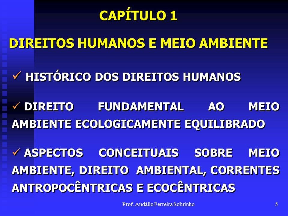 Prof. Audálio Ferreira Sobrinho4 INTRODUÇÃO O PORQUÊ DA ESCOLHA DO TEMA METODOLOGIA EMPREGADA E REFERÊNCIAS PROBLEMA, DELIMITAÇÃO E FIO CONDUTOR DA PE