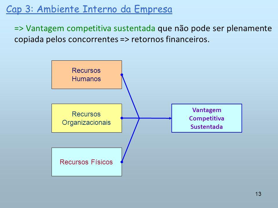 13 Cap 3: Ambiente Interno da Empresa => Vantagem competitiva sustentada que não pode ser plenamente copiada pelos concorrentes => retornos financeiro