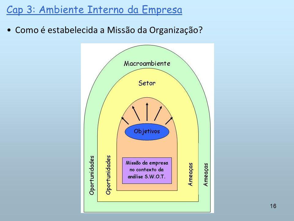 16 Cap 3: Ambiente Interno da Empresa Como é estabelecida a Missão da Organização?